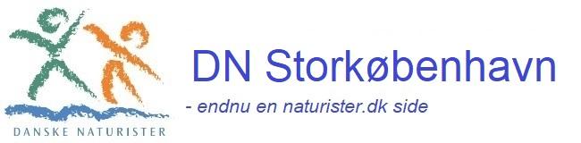 DN Storkøbenhavn
