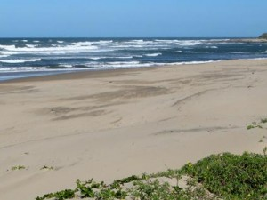 Kitesurfing-Palm-Beach-Featured