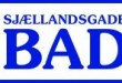 bade logo